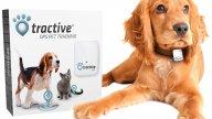Hundehalsband mit GPS